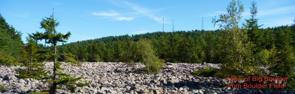 Veiw of Big Boulder from Boulder Field